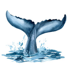 Whale Tail In The Ocean, Splashing Water, Whale On Isolated White Background, Watercolor Illustration