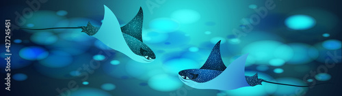Fotografie, Obraz Manta ray fishes, marine animals, sea creatures vector illustration