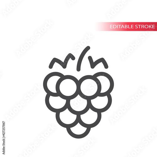 Fototapeta Raspberry line vector icon. Outline, editable stroke. obraz