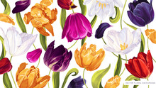 Floral Spring Background With Vector Multicolored Tulips. Realistic Hand-drawn Plants  Wallpaper For Computer Desktop, Tablet, Phone, Posters, Advertising Banners, Social Media Stubs, Cosmetic Product