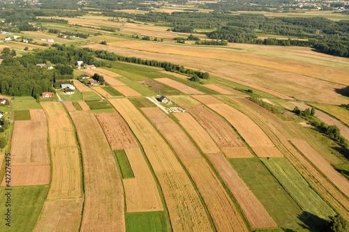 pola, łąki, tereny rolne, uprawa, wiosna