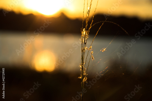 Fotografie, Tablou Sunrise