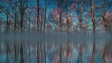 A Fantasy Walk In A Real Park. A Simple Walk In The Hvezda Park In Prague Turned Into A Magical Adventure In A Fantasy Realm. Starry Sky Mirrored By The Surface, Dreamy Haze Hanging Between The Planes