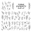 Flowers and leaves doodle collection. Hand drawn floral ornaments. Decorative plants illustrations.