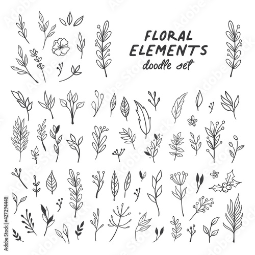 Flowers and leaves doodle collection. Hand drawn floral ornaments. Decorative plants illustrations. - fototapety na wymiar