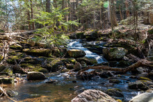 A Small Waterfall Flows Through The Early-spring Forest In Hardy Lake Provincial Park Near Gravenhurst In Muskoka, Ontario On A Beautiful Sunny Day.