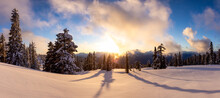 Panoramic View Of Canadian Nature Landscape On Top Of Snow Covered Mountain And Green Trees During Spring Sunset. Taken At Elfin Lake In Squamish, North Of Vancouver, British Columbia, Canada.