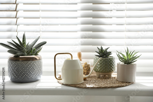 Many beautiful potted plants and watering can on windowsill. Floral house decor - fototapety na wymiar