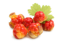 Fresh Cloudberries With Green Leaf