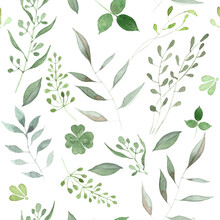 Hand Painted Watercolor Seamless Botanical Pattern On White Background. Green Illustration For Design