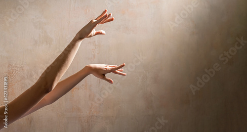 Billede på lærred thin graceful dancing hands of ballerina on wall background