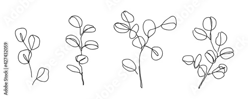 Set of Eucalyptus branches in modern single line art style. Continuous line drawing, aesthetic contour for home decor, posters, wall art, cards, packaging. Floral logo or icon vector illustration - fototapety na wymiar