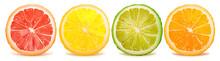 Realistic Detailed 3d Fresh Ripe Sliced Fruits Orange Lime And Lemon Set. Vector