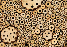 Insect Hotel Bee Hotel With Small Tubes In The Wood