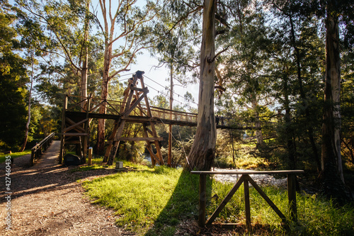 Fototapeta Yarra River View in Warburton Australia obraz na płótnie