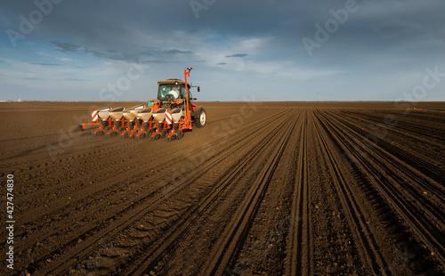 Fotografie, Obraz Farmer with tractor seeding