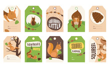 Stylish Special Tag Designs With Cute Cartoon Squirrel Character. Orange Or Brown Little Mammal Holding Nut, Smiling, Sitting. Wildlife, Nature Concept. Template For Greeting Labels Or Invitation Card