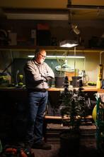 Senior Man Looking At Cannabis Plant Under Ultraviolet Light