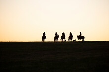 Silhouette Of Cowboys And Dogs At Sunset