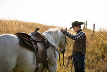 Portrait Of Cowboy And Horse On Field