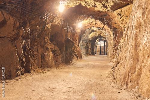 Podziemia zamku - The castle underground