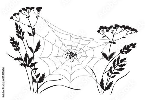 Monochrome Big Spider on Web Tapéta, Fotótapéta