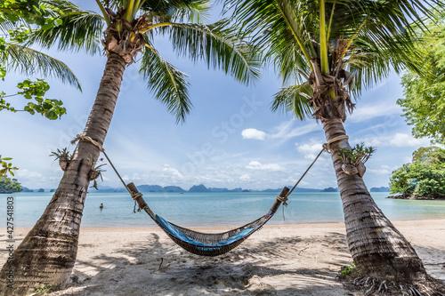 Fotografia, Obraz plage de rêve thailand avec sable blanc palmiers er hamac et ciel bleu pour coup