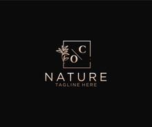 Initial CO Letters Beautiful Floral Feminine Editable Premade Monoline Logo Suitable, Luxury Feminine Wedding Branding, Corporate.