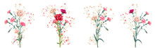 Panoramic View With Carnation. Set Red, Pink, White Flowers, Gypsophila Twigs, White Background, Collection For Mother's Day, Victory Day, Digital Draw, Vintage Illustration, Vector, Watercolor Style