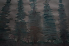Tannen Wald Zur Nächtlichen Zeit Als Grafische Darstellung