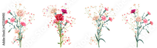 Fototapeta Panoramic view with carnation. Set red, pink, white flowers, gypsophila twigs, white background, collection for Mother's Day, Victory Day, digital draw, vintage illustration, vector, watercolor style obraz