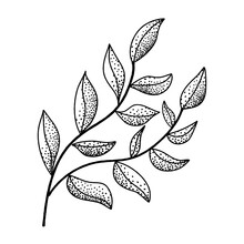 Hand Draw Black  White Leaf With Black Dots Seamless Pattern