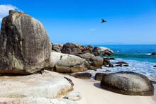 Sandbank With Rocks