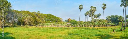Fotografía Panorama of green meadow, Ava, Myanmar
