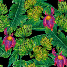 Watercolor Banana Leaf Botanical And Banan Bundle And Banana Blossom Elements Isolated Seamless Repeat Pattern