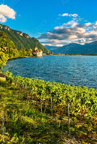 Vineyards and Chillon Castle on Lake Geneva in Switzerland
