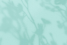 Abstract Flower Shadows On Light Mint Green Bright Color Wall Texture Background.