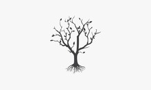 Dry Tree With Fallen Leaves Icon. Isolated White Background.