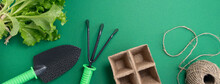 Banner With Shovel, Green Seedlings, Peat Pots Are Intended For Growing Seedlings And Scourges On A Green Background. Backyard Vegetable Garden Planting Concept With Copy Space. Soft Focus.