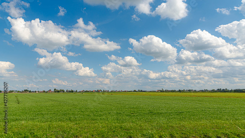 Photo Summer countryside landscape with flat and low land under blue sky, Typical Dutch polder and water land with green meadow, Small canal or ditch on the field along the road, Noord Holland, Netherlands