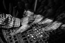 Merchant Hand With Fish