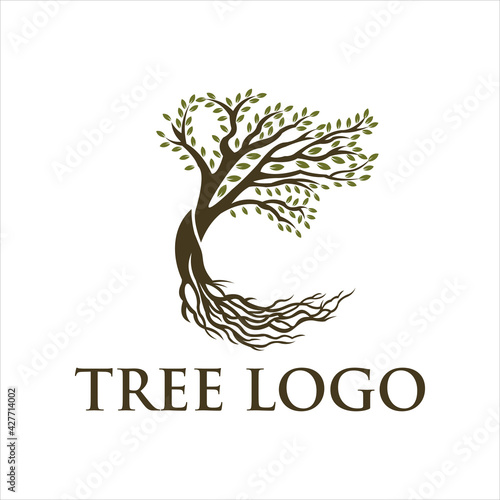 Canvas Abstract vibrant tree logo design, root vector - Tree of life logo design inspiration isolated on white background