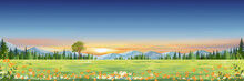 Spring Landscape With Sunset Sky With Mountain And Pine Trees In Evening,Panorama Green Field Of Grass Land With Wild Flower Blooming In Summer,Cartoon Vector Horizon Banner For World Environment Day