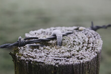 Frost On Post