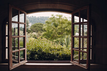 Plants Growing In Yard Seen Through Window Of House