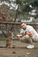 Man In The Reserve Is Playing With A Kangaroo