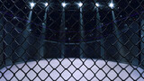Cage fight arena behind the chain link fence. Interior view of fighting arena with fans and shining spotlights. Digital sport 3D illustration.