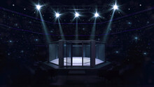 Cage Fight Arena With Opened Door. Interior View Of Fighting Arena With Fans And Shining Spotlights. Digital Sport 3D Illustration.