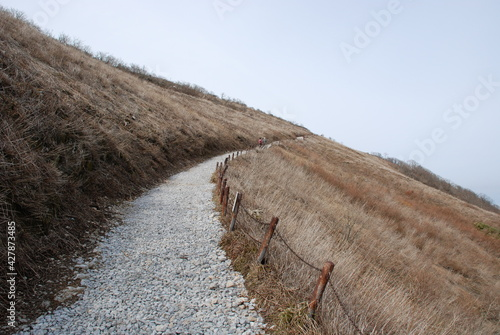 Photo Road Amidst Agricultural Field Against Clear Sky