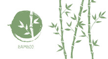 Bamboo Tree. Hand Drawn Style. Vector Illustrations.